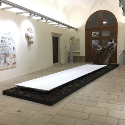 """2020 Allestimento Mostra a Palazzo Roncale Rovigo """"La Quercai di Dante"""""""